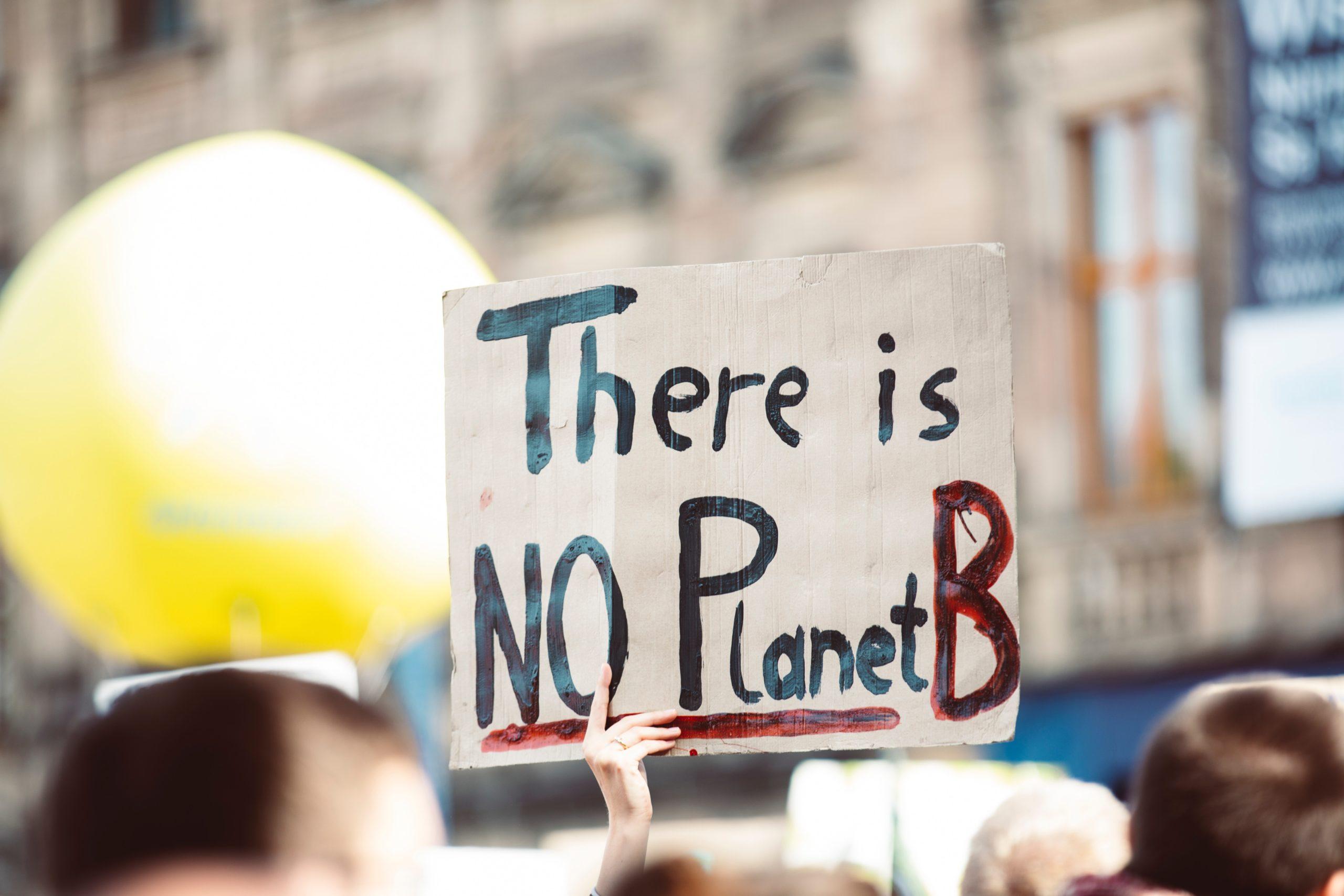 Umweltaktivistin hält Plakat bei Demonstration