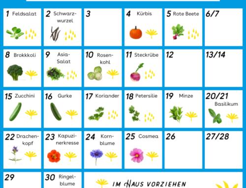 Aussaatkalender für den April