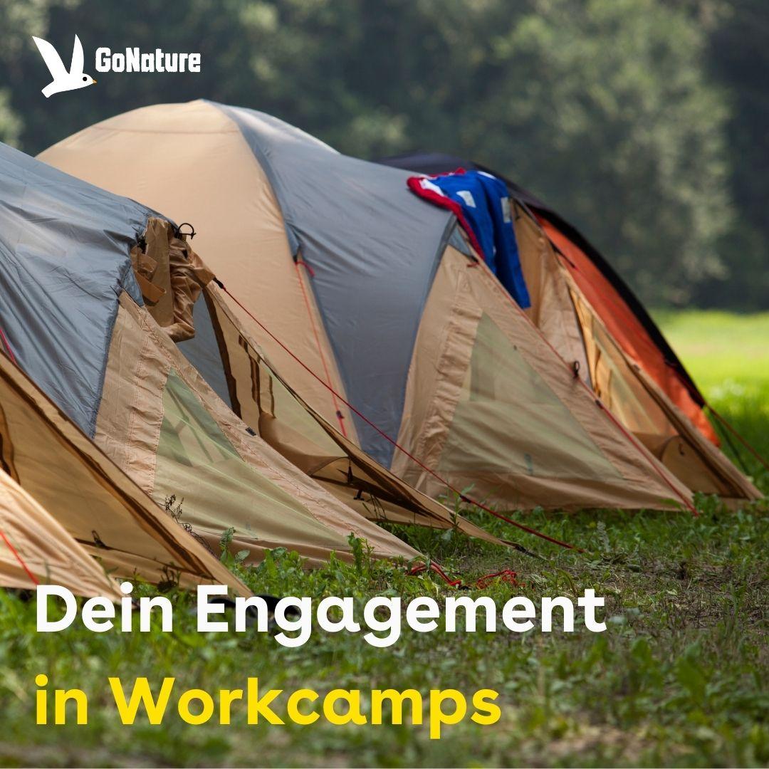 Workcamp Engagement