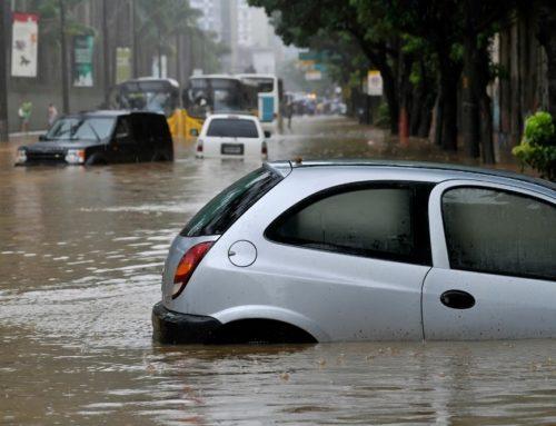 So hilft Naturschutz gegen Hochwasser in Deutschland