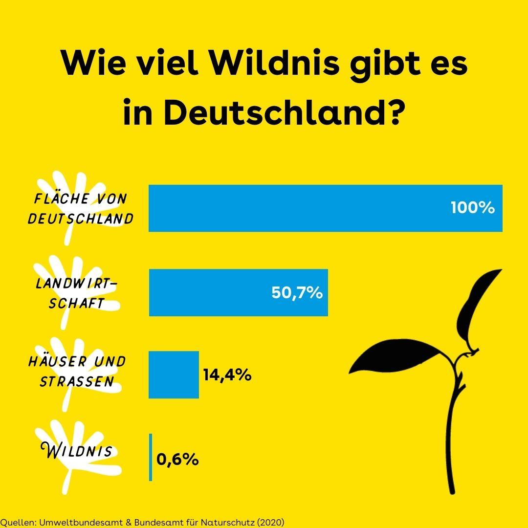 Wildnis in Deutschland