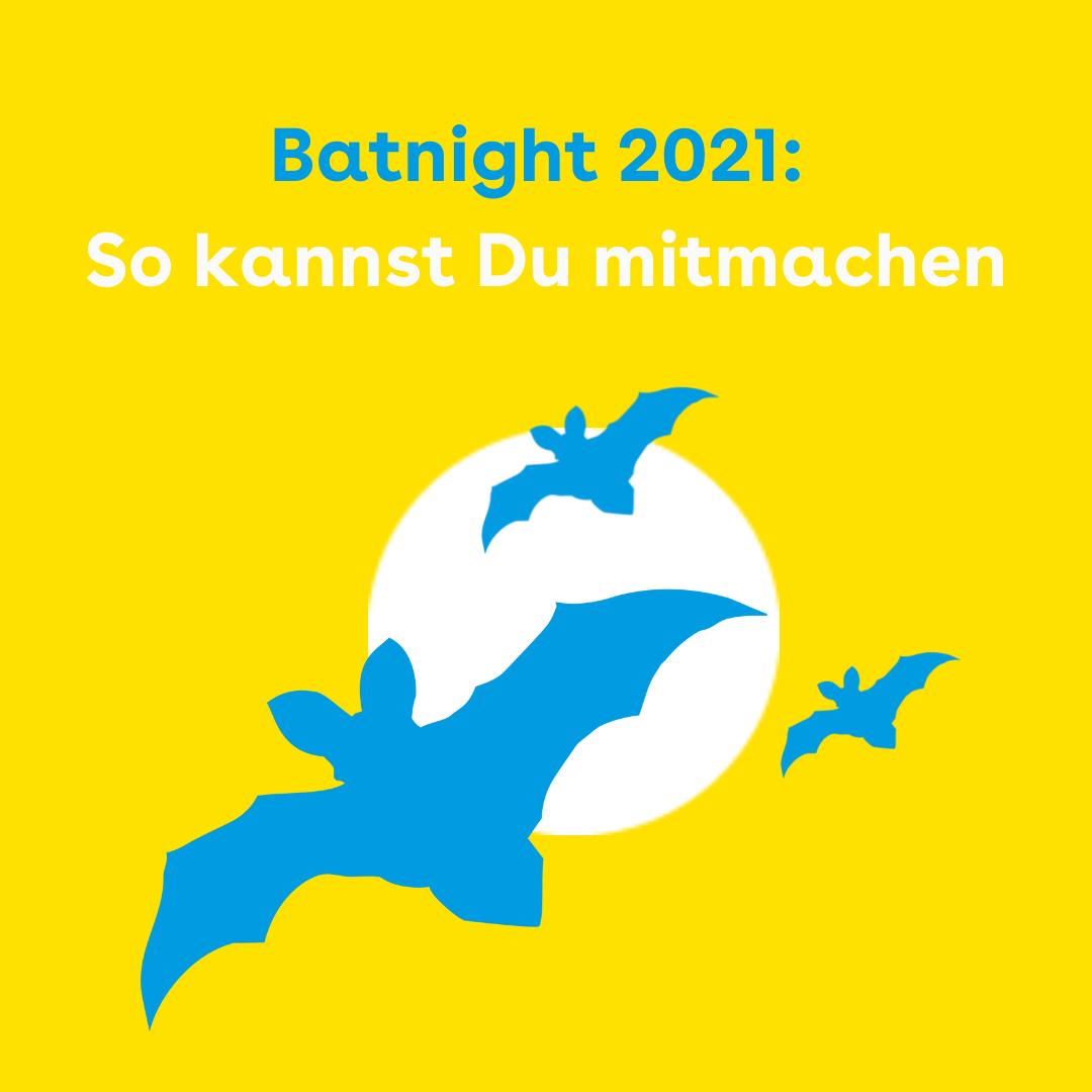 Der Hintergrund ist gelb. Oben steht in blau Batnight 2021 und in weiß So kannst Du mitmachen. In der Mitte der Kachel ist ein großer weißer Kreis, davor fliegen blaue illustrierte Fledermäuse.