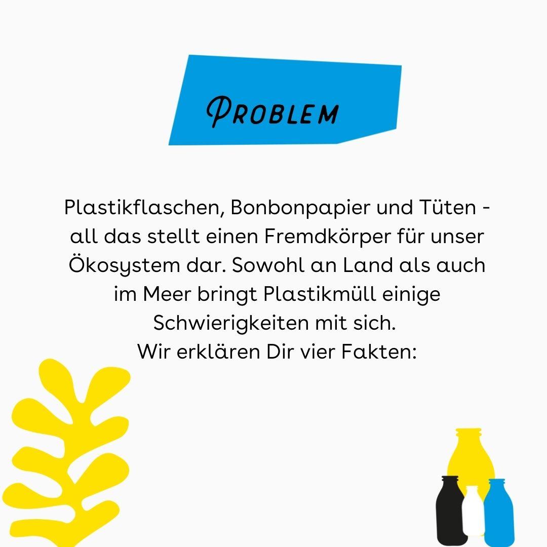 """Auf dem Bild sieht man rechts unten eine Illustration mehrerer Plastikflaschen. Oben steht der Titel """"Problem"""". Darunter wird in einem Text erklärt, warum Plastikmüll ein Problem darstellt."""