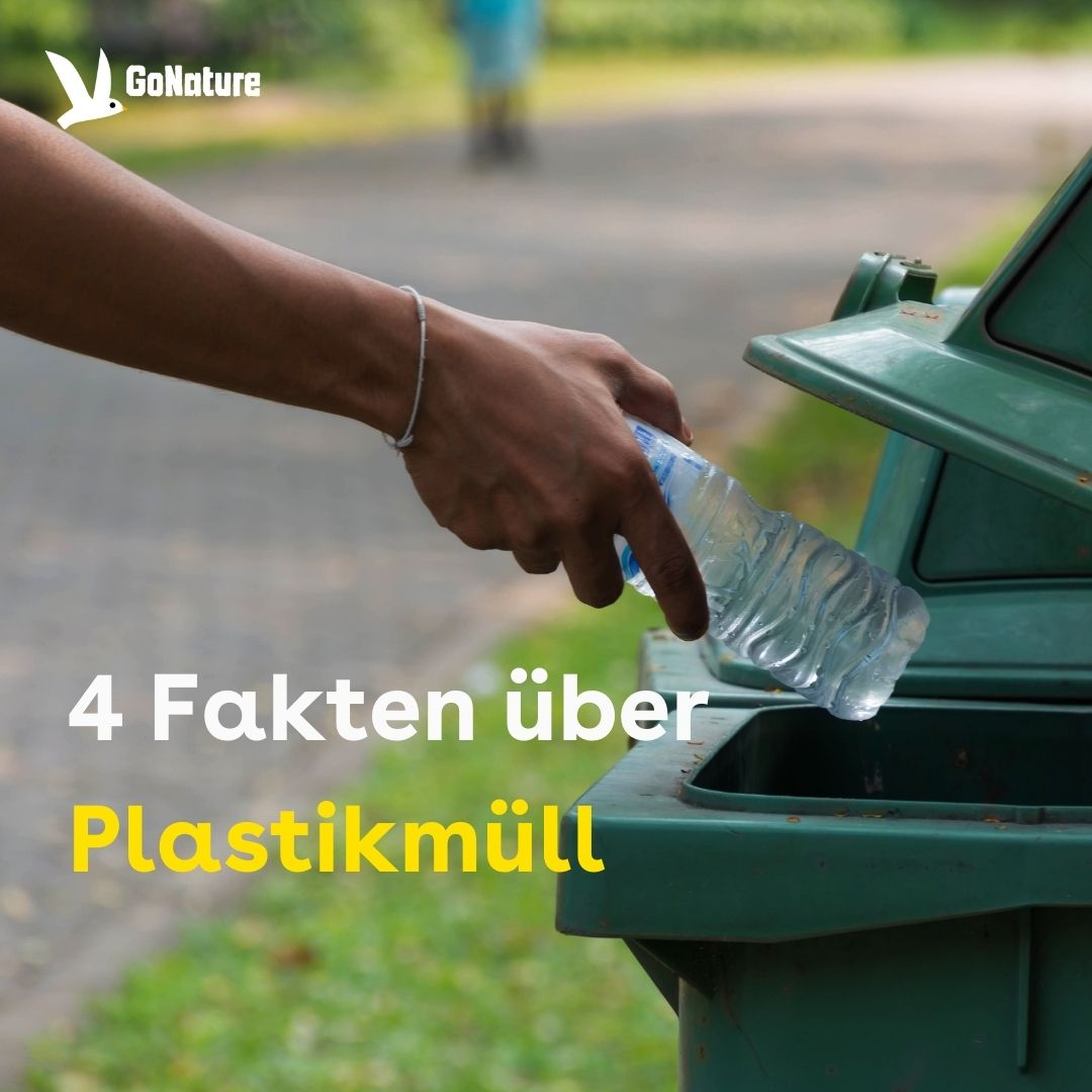 Man sieht eine Hand, die eine Plastikflasche festhält. Die Plastikflasche ist über einem grünen Mülleimer.