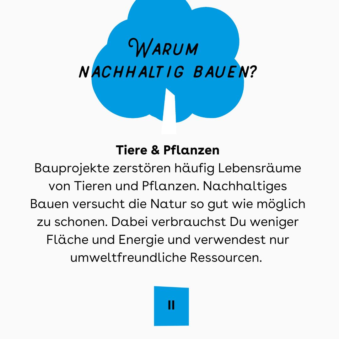 """Auf blauem Hintergrund, der Titel """"Warum nachhaltig bauen?"""" mit einen blauen Baum dahinter. In der Mitte, der Text."""