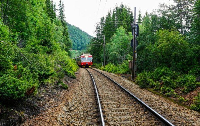 Auf dem Bild ist ein Zug abgebildet. Links und Rechts und im Hintergrund befindet sich jeweils Wald und grüne Bäume. Im Vordergrund des Bildes treten eher die Schienen auf.