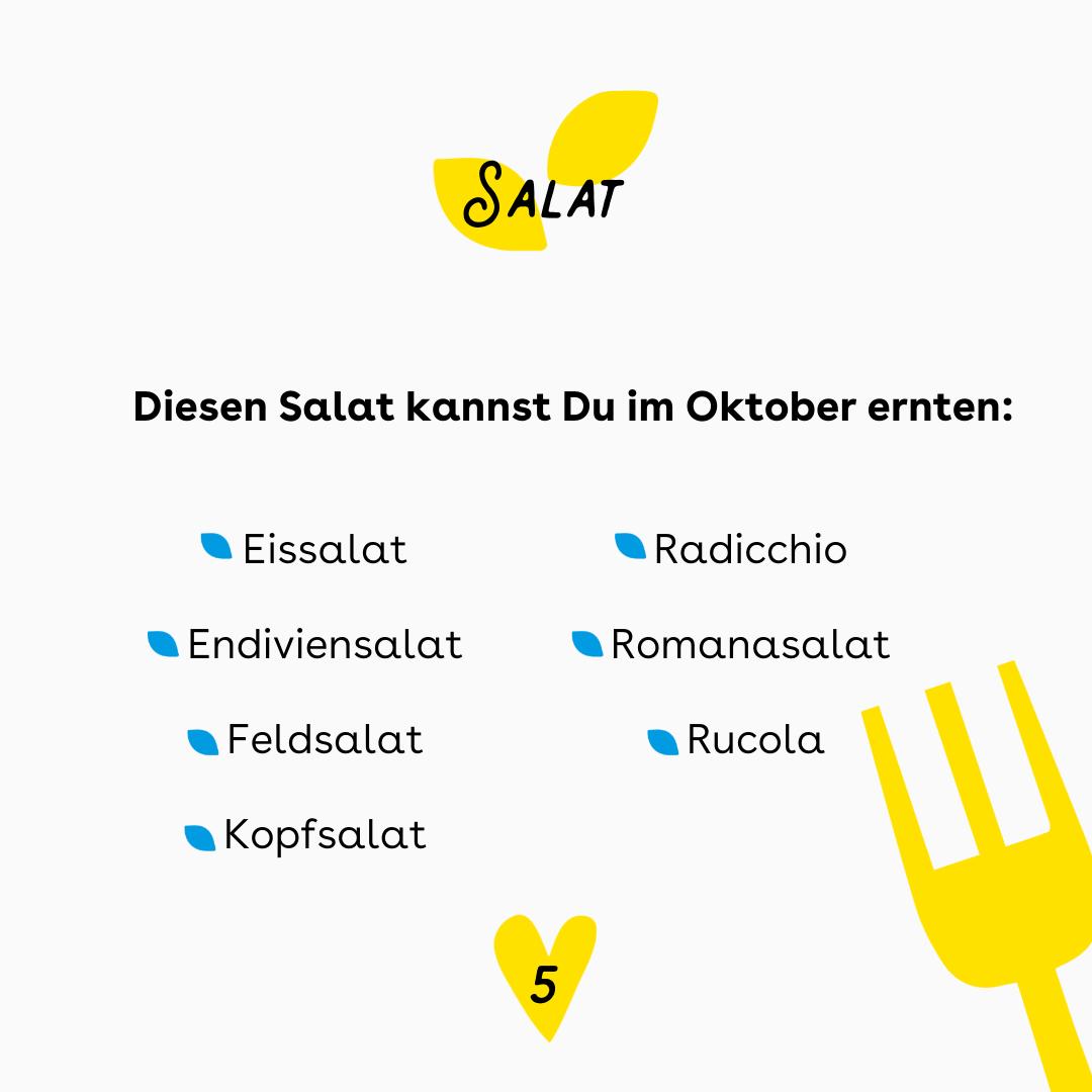 """Der Hintergrund ist weiß. Oben ist ein gelbes Blatt, in dem steht: """"Salat"""" Darunter ist eine Liste mit den Salatsorten, die im Oktober saisonal sind. diese Liste steht auch in der Caption. Rechts unten ist eine Illustration einer Gabel. Unten mittig ist ein gelbes Herz mit einer 5."""