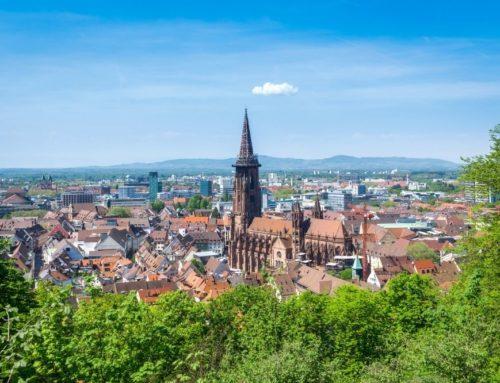 Naturschutz in Freiburg: 5 Projekte
